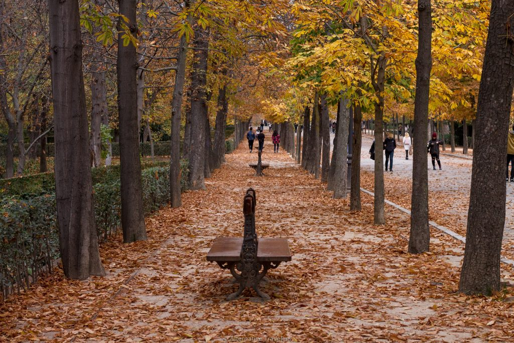 Madrid Retiro Park in Winter Alternative Travelers