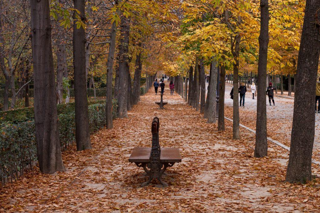 Madrid Retiro Park in Winter Alternative Travelers