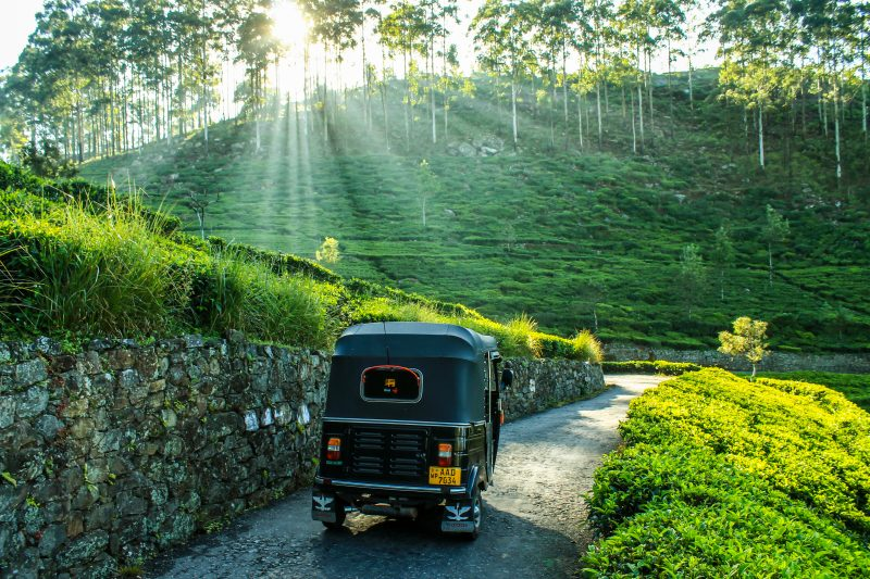 Tuk Tuk in Sri Lanka - sunny winter holiday destinations