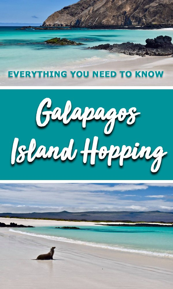 Everything you need to know before you book a Galapagos island hopping trip. The best galapagos islands reviewed, the best tours both land based and galapagos cruises compared. Learn how to book a budget Galapagos tour #galapagos #galapagosecruise #galapagosonabudget