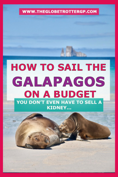 The Galapagos with G Adventures - a budget cruise review. How to sail the galapagos on a budget. Perhaps you didnt think it was possible to see the Galapagos islands on a budget or you're needing some budget galapagos tips. You can go sailing the galapagos islands without selling a kidney on the best galapagos cruise in ecuador | galapagos itinerary | Galapagos sailing | #galapagos #galapagoscruise #galapagosislands