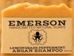 travel gift for her shampoo bar
