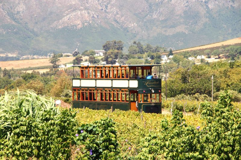 Wine tasting Franschhoek Wine tram -  a great winter sun holiday