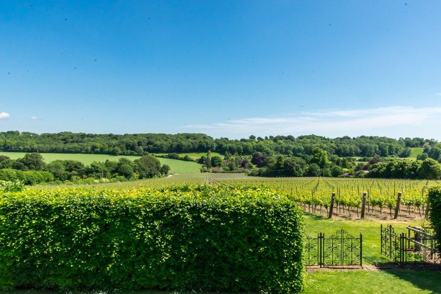 Hambledon in hampshire - a beautiful english countryside getaway