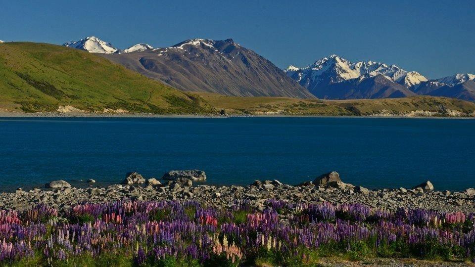 Lake Tekapo new zealand a bucket list destination