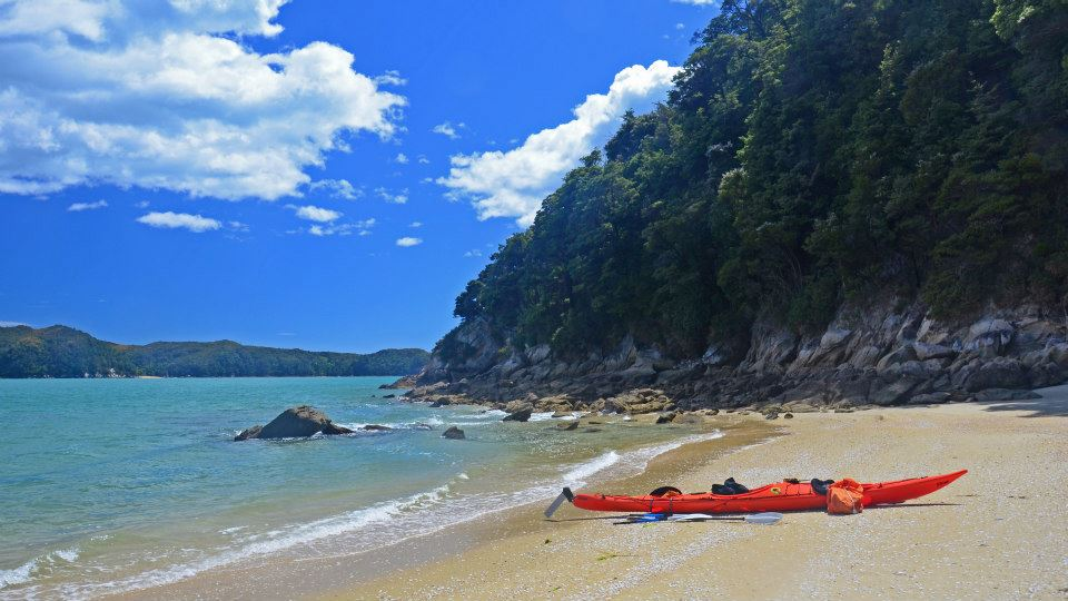 New zealand south island itinerary sea kayaking abel tasman
