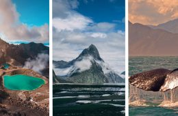 new zealand north island vs south island