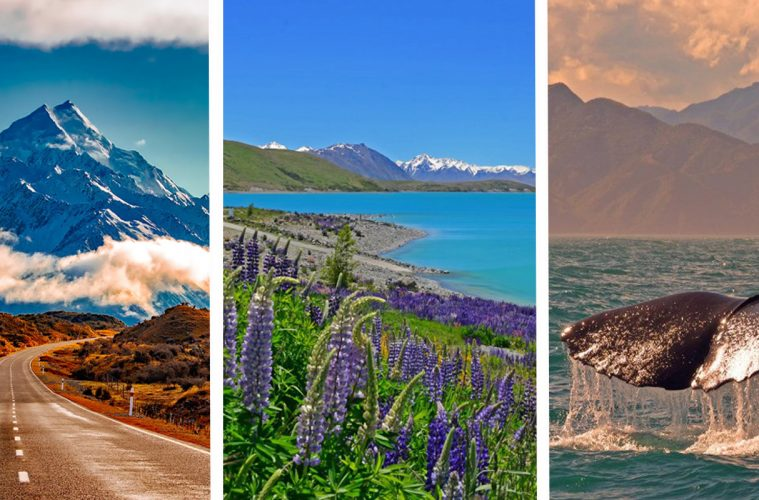 new zealand south island itinerary