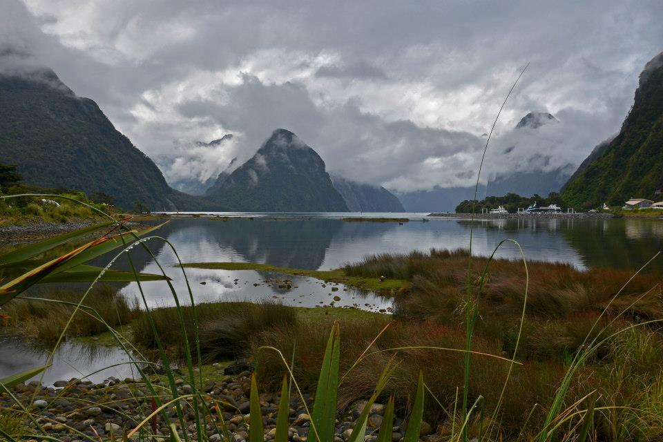new zealand south island vs north island  - milford sound in bad weather