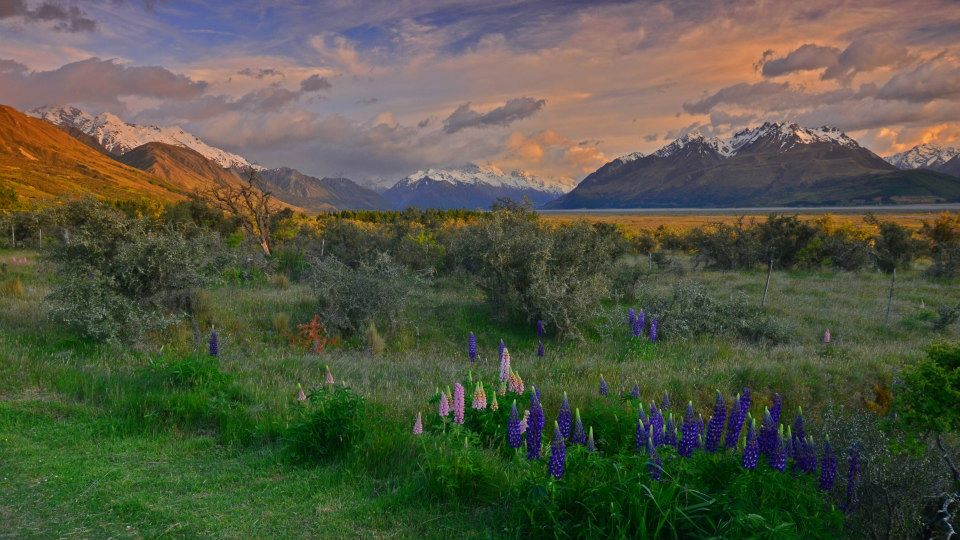 new zealand south island itinerary sunrise over mt cook