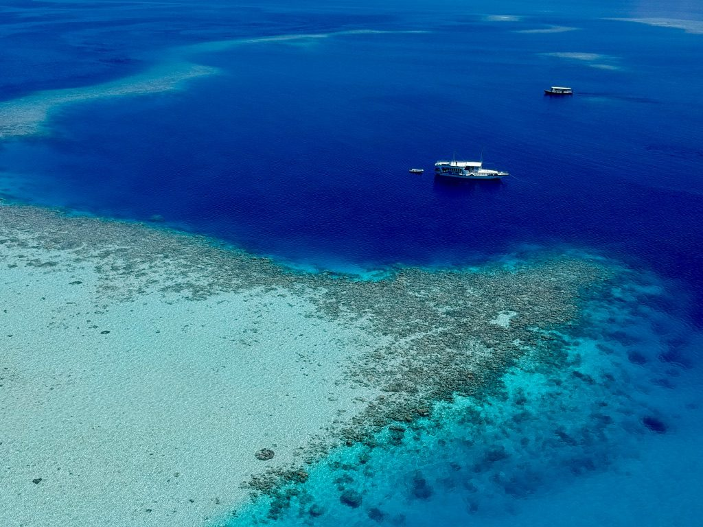 drone photo of the maldives reefs