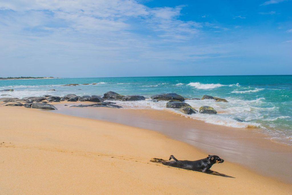 Arugam Bay beach on the east coast of sri lanka
