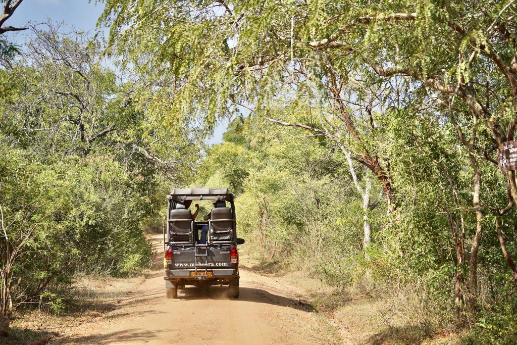 safari vehicle in Yala National park