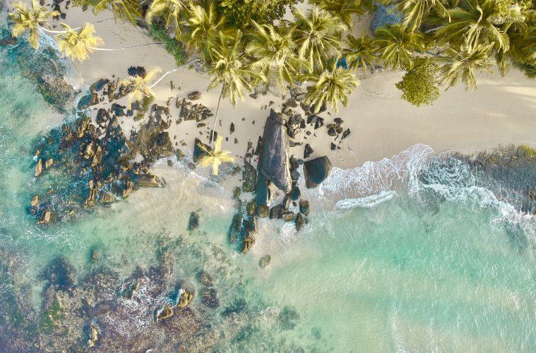 dalawella beach from above