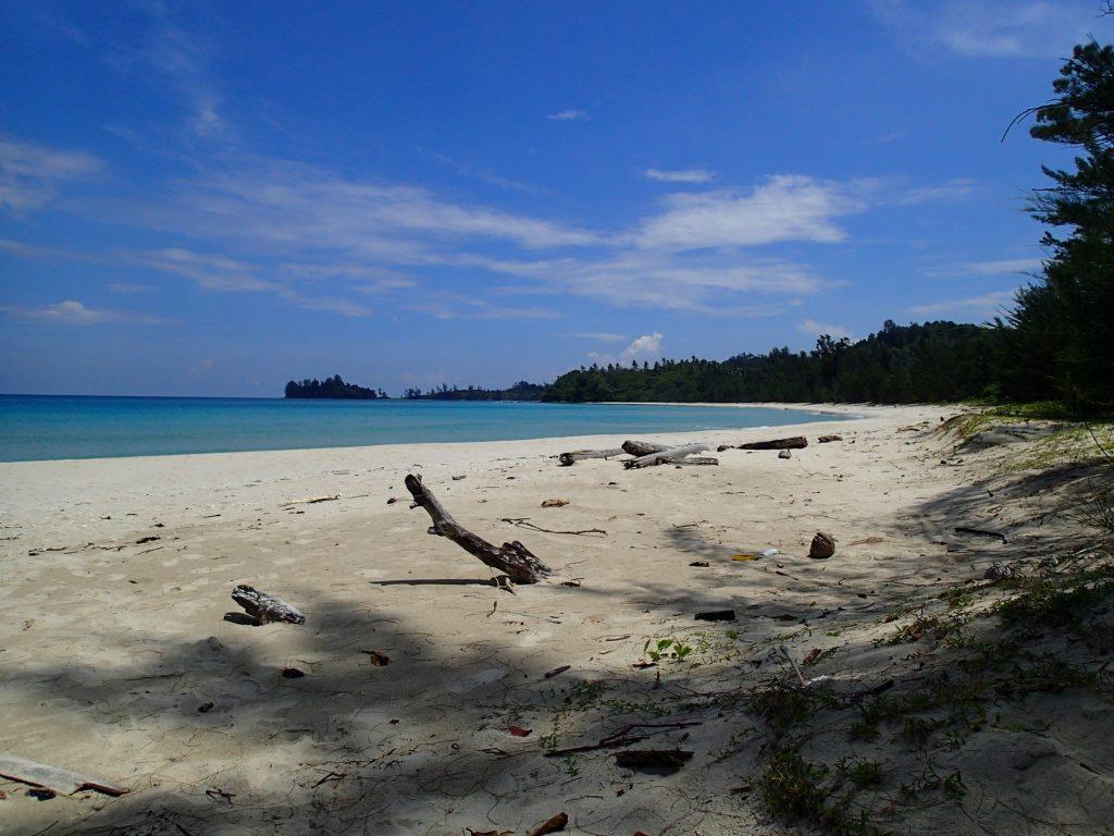 kudat turtle beach borneo