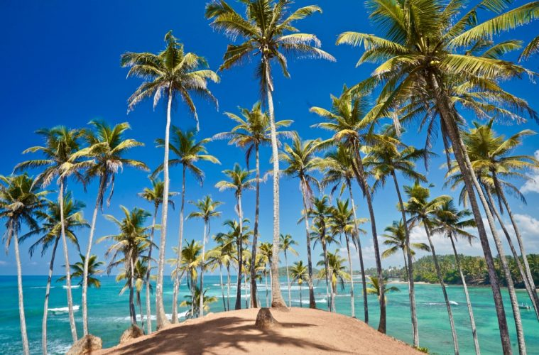 visit coconut tree hill in sri lanka - one of the best things to do in mirissa