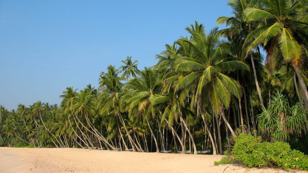 one of the best beaches in sri lanka