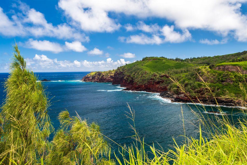 Maui coastline on a sunny day