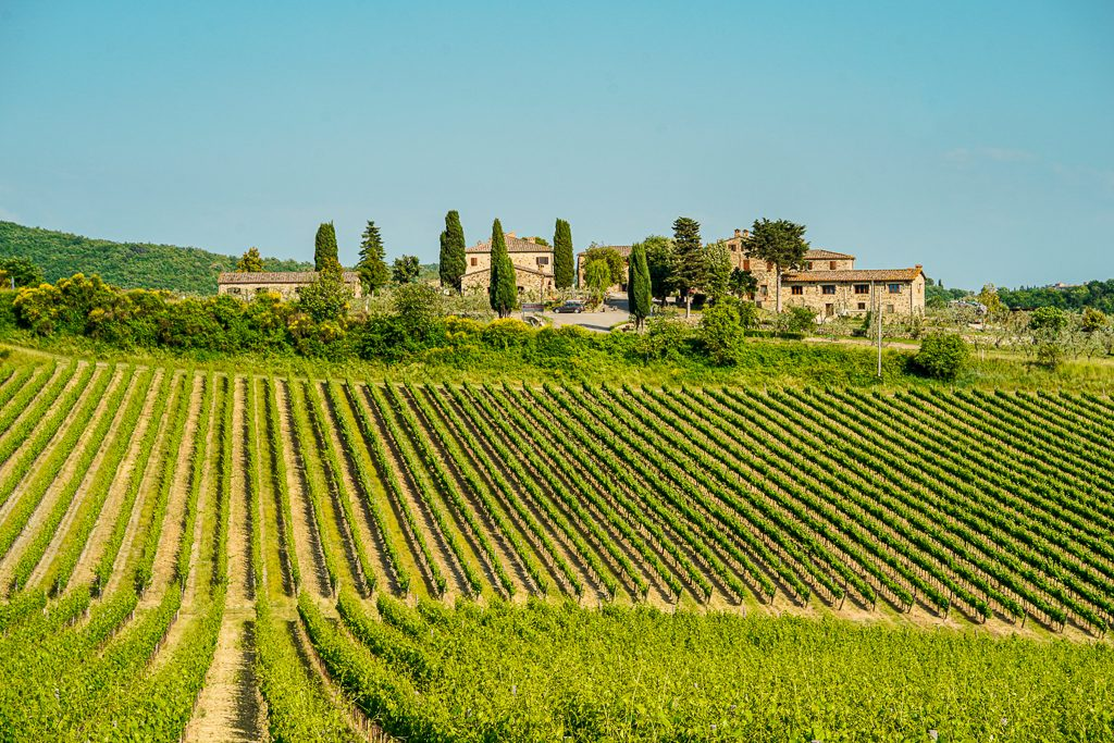 wineries in chianti region